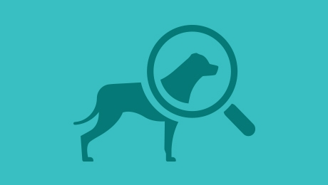 Dog and magnifying glass icon